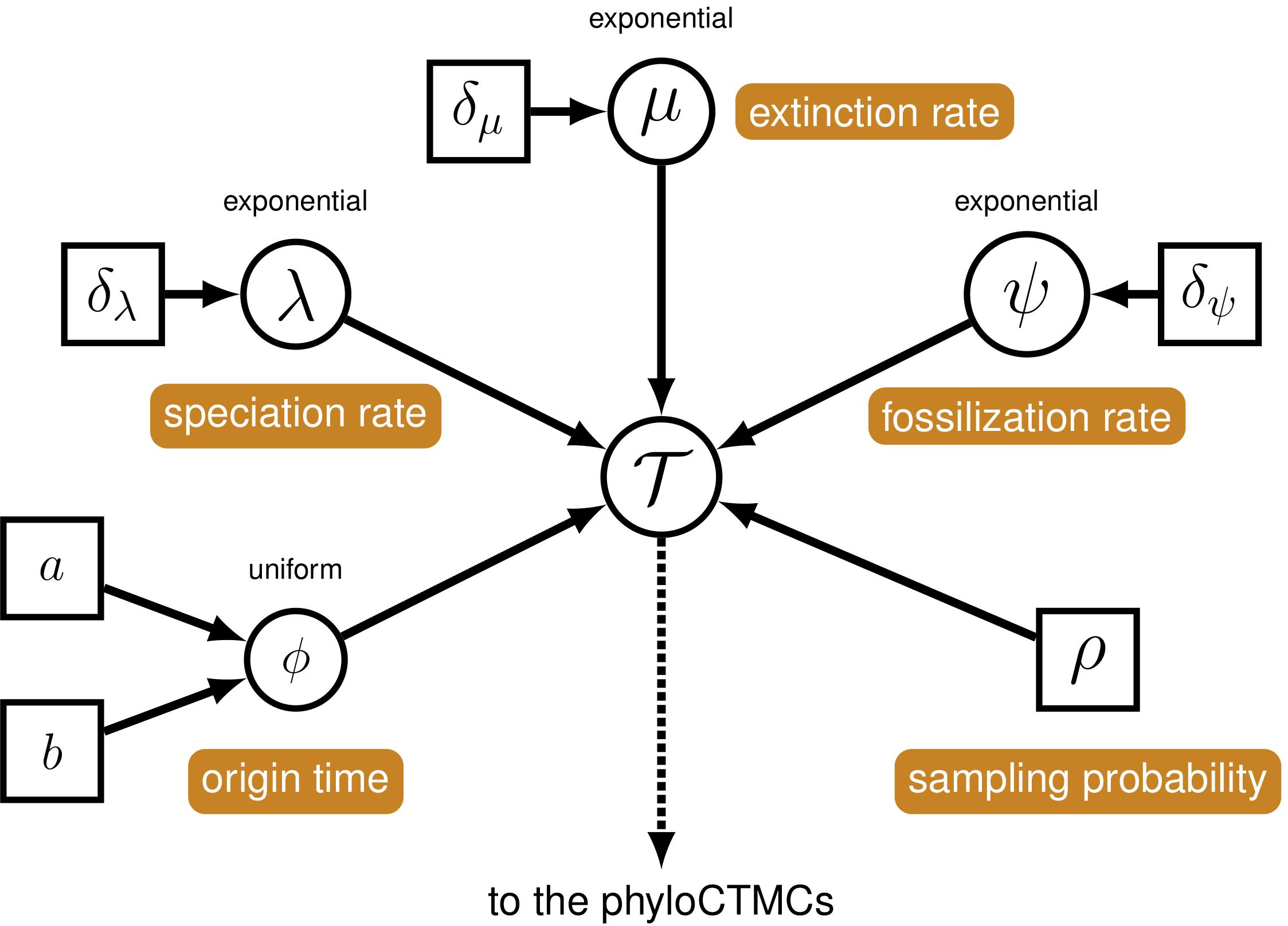 RevBayes Total Evidence Tree Estimation • apb2018